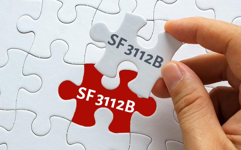 SF 3112B - Supervisor's Statement